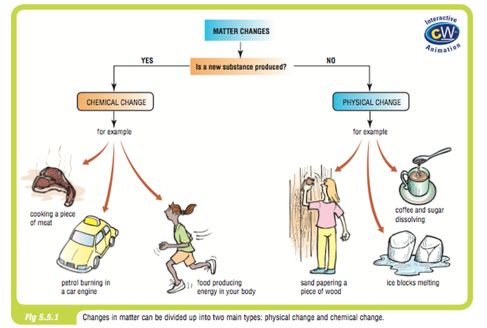 Image from pearson science aspects 1